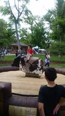 airbound-mechanical-bull-1-(1)